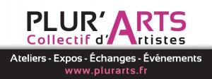 logo PA 2014
